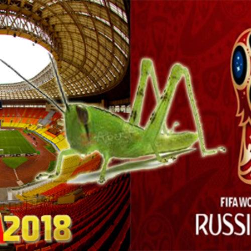 Wabah Belalang Akan Mengancam Piala Dunia 2018 Di Rusia
